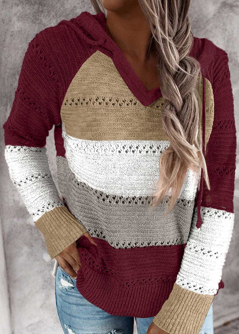 Hollow Out Knitted Long Sleeve Hooded Sweater