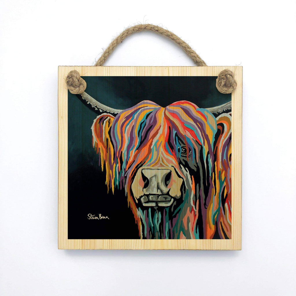 Ally McCoo - Wooden Wall Plaque