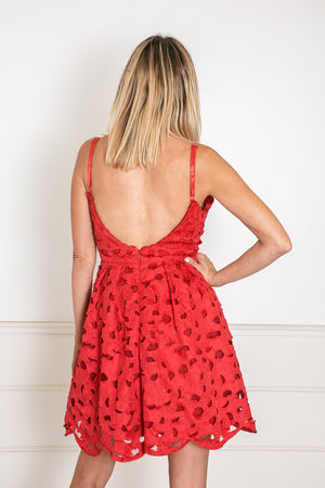 Lace Fit-&-Flare Mini Dress - Red