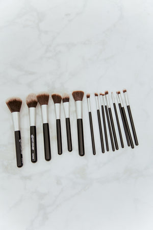 15 Piece Professional Brush Set