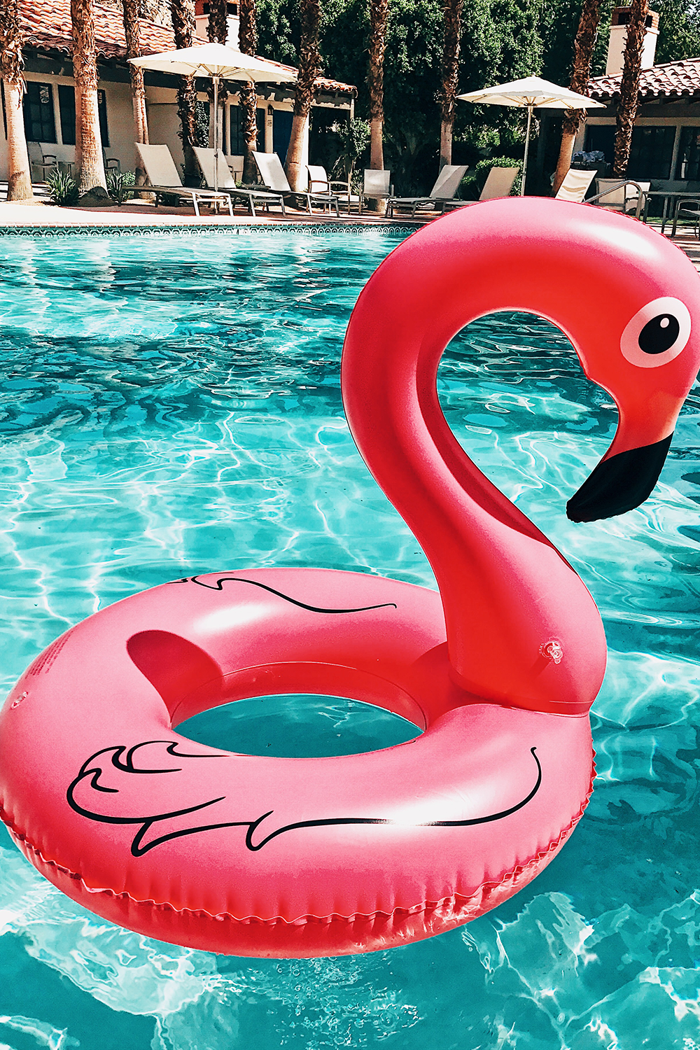 Flamingo Floaty - Haute & Rebellious