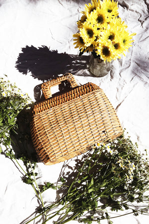 Picnic Basket  Bag with Handle