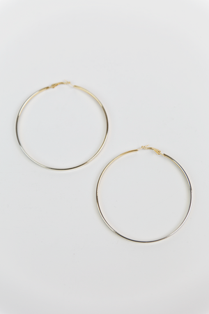 Circle Hoop Plated Earrings - Haute & Rebellious
