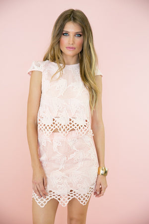 Erin Lace Mesh Detail  Skirt - Blush - Haute & Rebellious