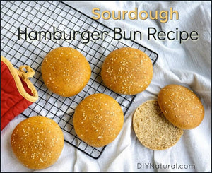 Making a hamburger bun recipe using sourdough blows normal hamburger buns out of the water! These buns are soft and nourishing but are also nice and sturdy.