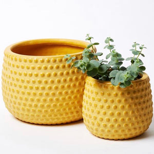 Pot - Hobnail Mustard - Two sizes