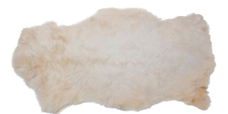 Your beautiful sheepskin rug adds a luxurious layer of comfort to your home