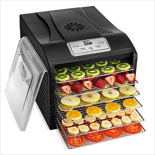 Professional Dehydrator Machine