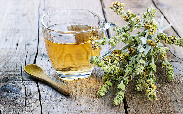 The Health Benefits of Greek Mountain Tea