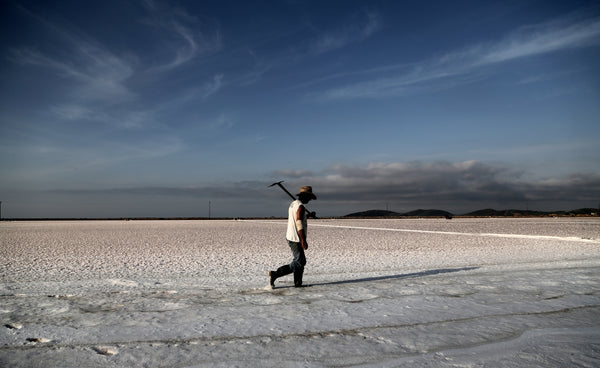 Salt Odyssey - A tasteful journey with the salt artisans of Greece.