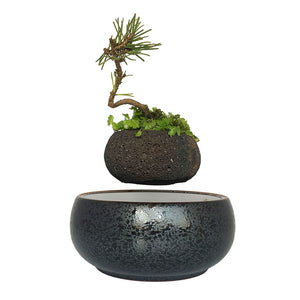 TGB Levitating Air Bonsai Pot