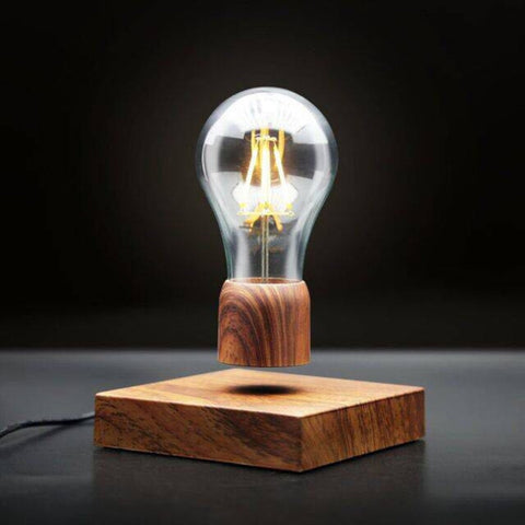 TGB Levitating Light Bulb