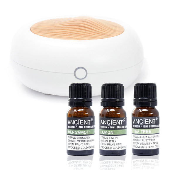 aroma diffuser set cheeseonbread