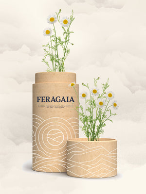 Chamomile Gift Tube | 50cl