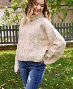 Cable knit turtle neck
