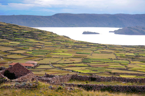 view of Lake Titicaca in Peru