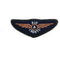 "Air Cadet Blue / Bronze ATP ""A"" Flying Wings Badge 