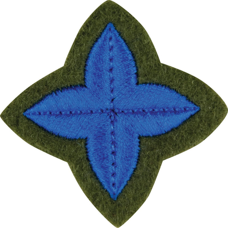 The ACF Award Training Badges (Per 10)