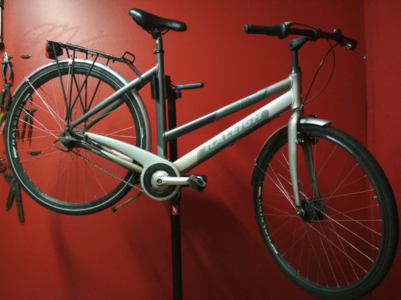 Sasha - Raleigh Sprite Alu in Grey