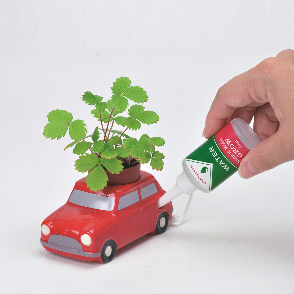 Voiture pot auto-irrigante Rouge