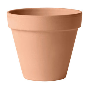 Pot en terre cuite blanchie 13 cm