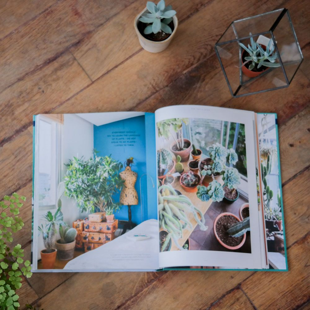 "Livre ""Urban Jungle"" - Living and Styling with plants"