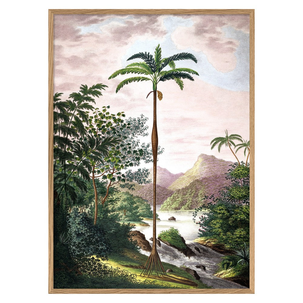 Affiche - Jungle Scenery