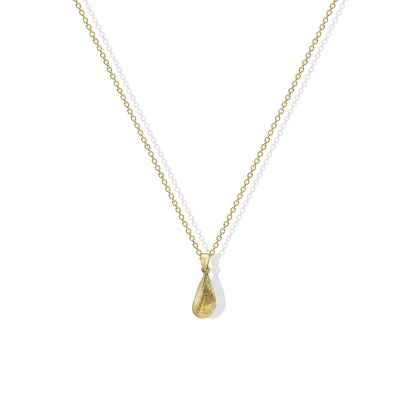 THE BAYSIDE DROP SHELL NECKLACE