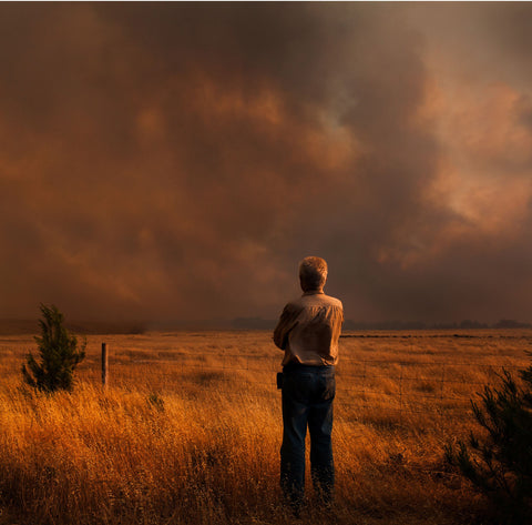 Support bush fire recovery with food bank
