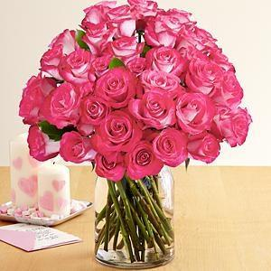 36 Pink Pearl Roses - Excellent Florists