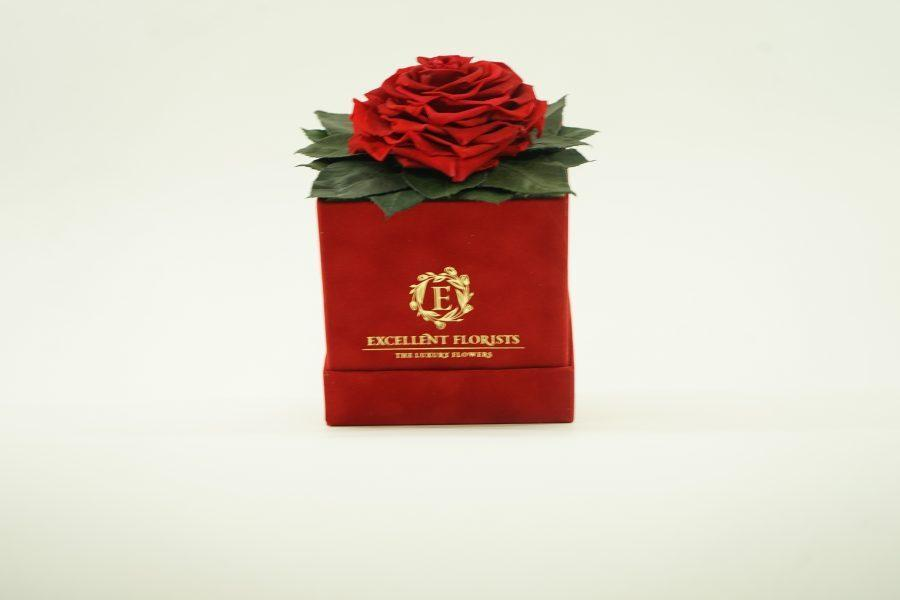 Red Heart Shape Preserved Rose ( Red Box ) - Excellent Florists
