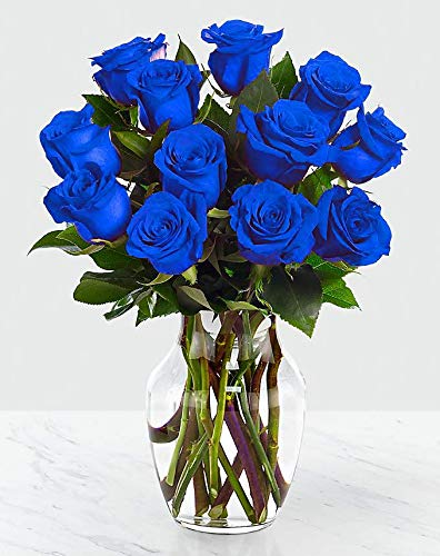 Two Dozen Blue Rose Arrangement in a vase