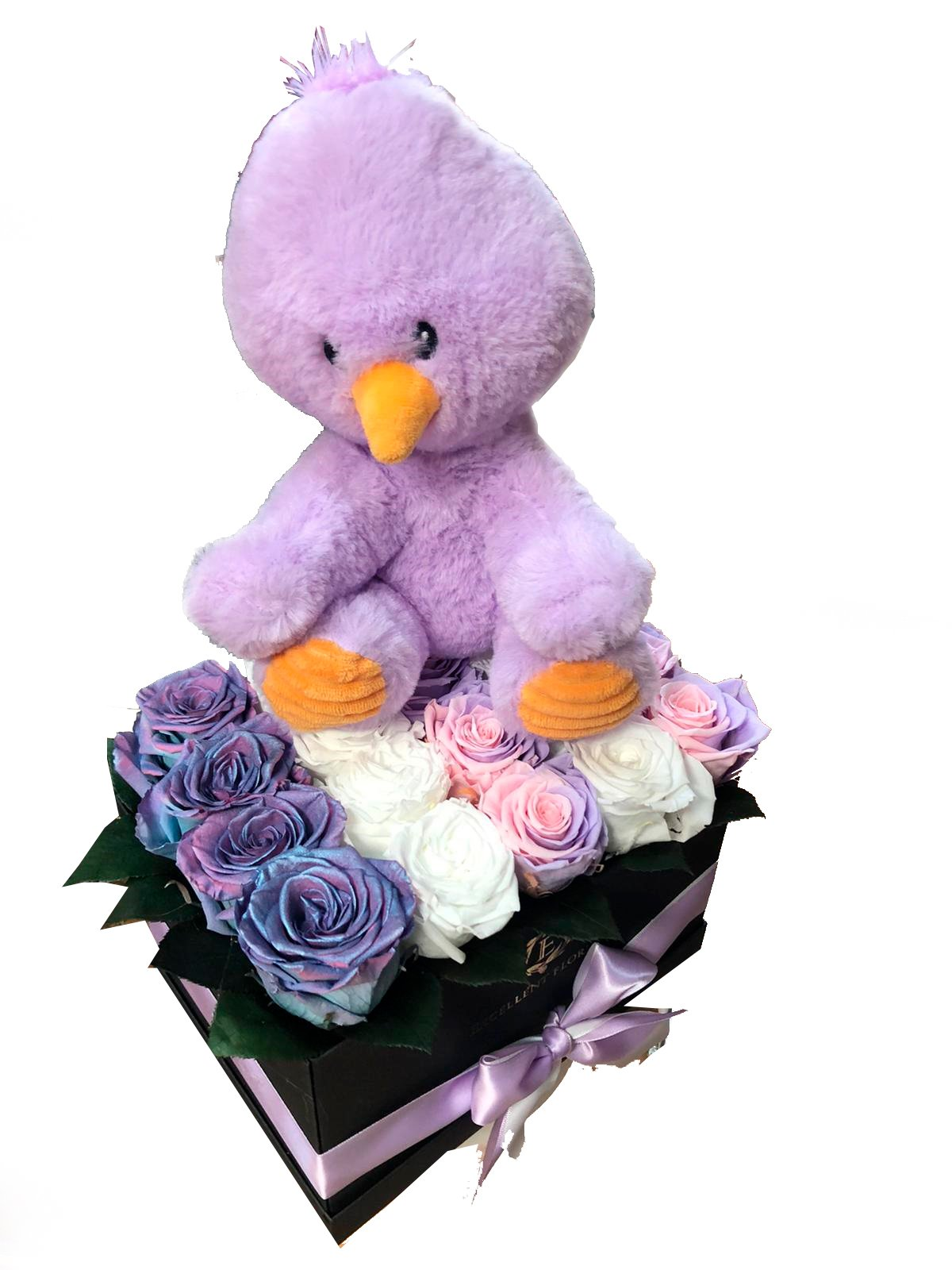 New Baby Purple roses and Toy