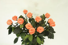 Load image into Gallery viewer, preserved roses excellent florists