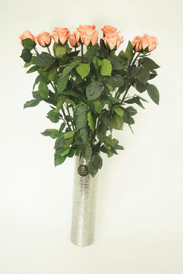 12 LONG STEM CORAL   PRESERVED ROSES LUXURY BOUQUET IN GLASS VASE - Excellent Florists