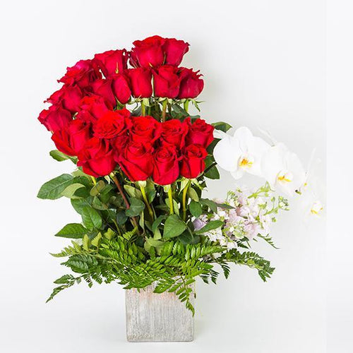 Red Beauty - Excellent Florists