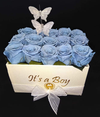 It´s a Boy Square Preserved Roses