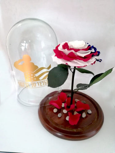 American Patriotic Preserved Jumbo Rose in a Dome The USA flag
