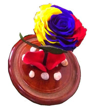 Load image into Gallery viewer, Tricolor Preserved Jumbo Rose in a Dome Colombian and Ecuadorian flag