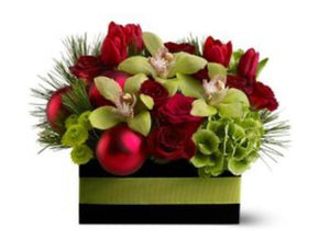 Christmas Orchids and Roses