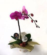 Load image into Gallery viewer, Purple Orchids on a wonderful vase