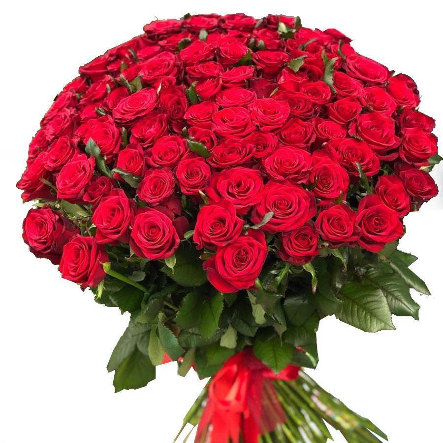 200 Red Roses Bouquet