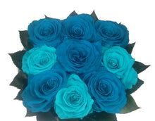Load image into Gallery viewer, Turquoise 9 Large Preserved Roses in a Round box