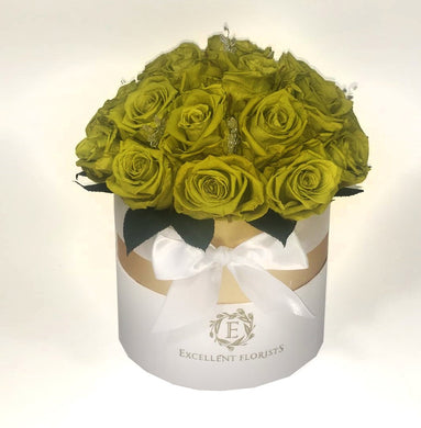 16 Light green Preserved Roses in a Round box