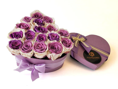Bicolor White and Purple Heart