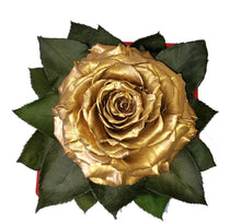Load image into Gallery viewer, Golden preserved rose
