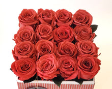 Load image into Gallery viewer, Medium Square Red Coral Preserved Roses