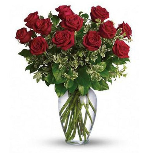 Devoted to You 1 Dz Red Roses - Excellent Florists