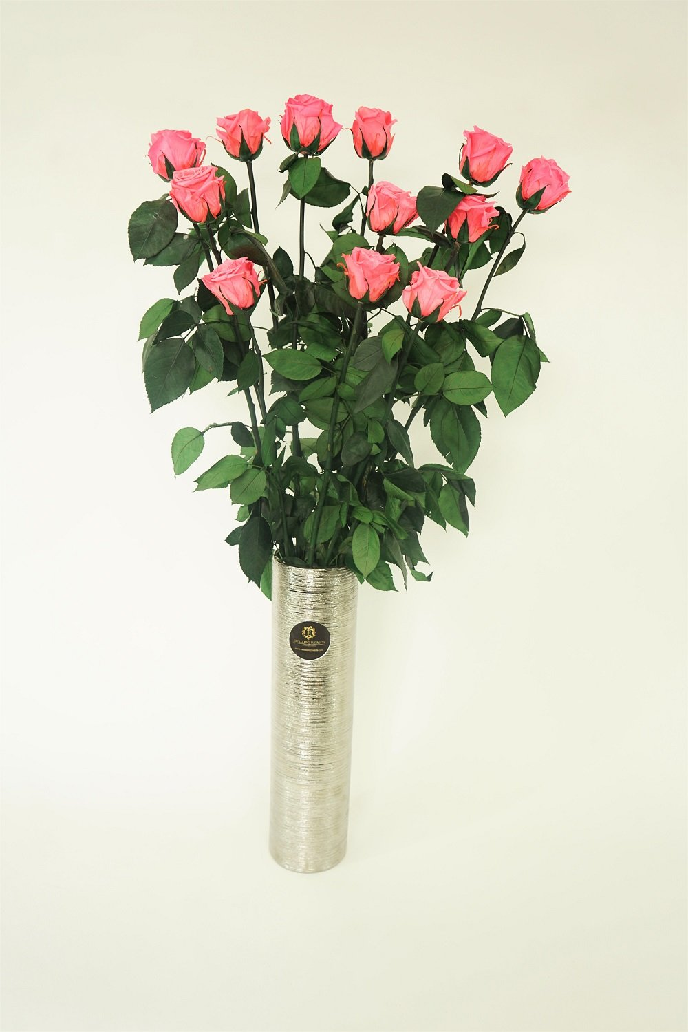 12 LONG STEM PINK   PRESERVED ROSES LUXURY BOUQUET IN GLASS VASE - Excellent Florists