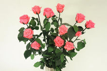 Load image into Gallery viewer, 12 LONG STEM PINK   PRESERVED ROSES LUXURY BOUQUET IN GLASS VASE - Excellent Florists